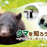 01 タイトル クマを知ろう展